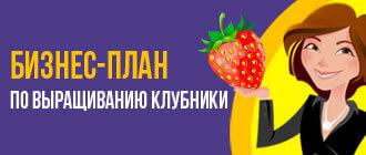 Бизнес-план по выращиванию клубники_мини