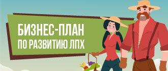 Бизнес-план по развитию лпх_мини