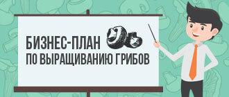 Бизнес-план по выращиванию грибов_мини