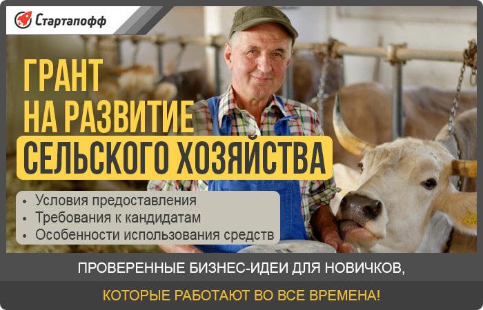 Изображение - Как стать фермером с нуля субсидии от государства grant-na-razvitie-selskogo-hozyaystva