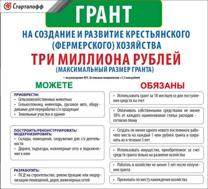 Изображение - Как стать фермером с нуля субсидии от государства usloviya-vydachi-granta-na-selskoe-hozyaystvo