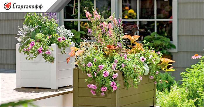 Большое количество ящиков с цветами